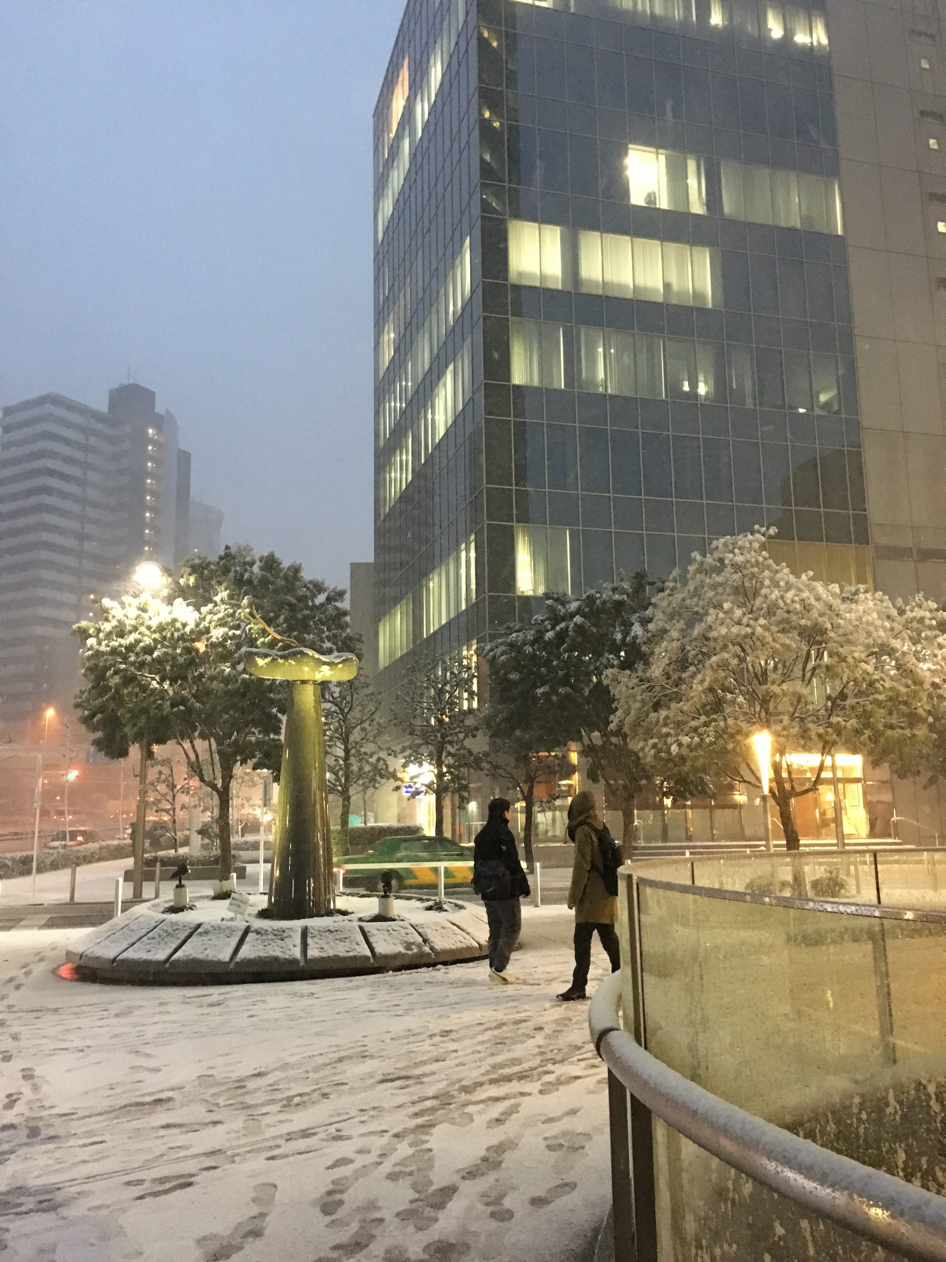 January Weather in Tokyo -snow?